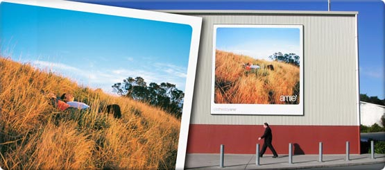 Full colour billboards printed almost any size!
